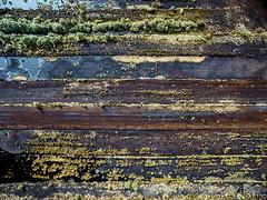 4704062017 (2c..) Tags: dji 2c© texture 2cireland ireland ©lowresolutionpreview textures ©2c 5dmk2 © 72dpipreview 2cimage drone kildare landscape 2c