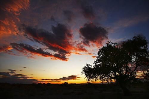 IMG_2081-w Sunset