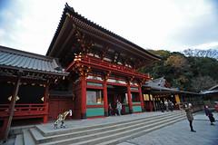 Tokyo 2009 - 鎌倉 - 鶴岡八幡宮