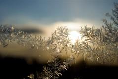 Ice in the Sun
