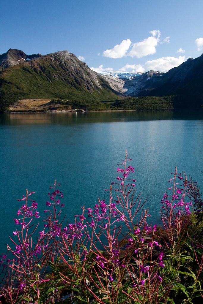 Svartisen glacier on a warm summer day