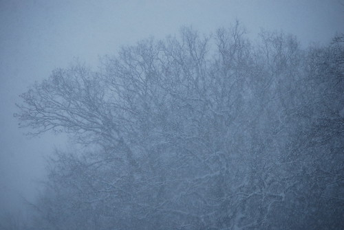 last years snow.....