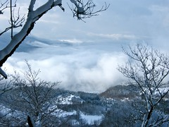 ".....tra il cielo e la terra.... ("" paolo ammannati "") Tags: panorama natura cielo neve toscana inverno verna casentino ghiaccio effettinaturali fotoconneve panoramaconneve"