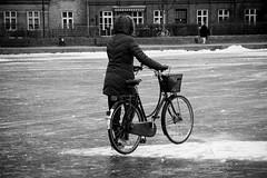Bike Ice