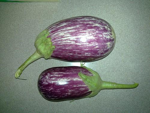 First eggplants