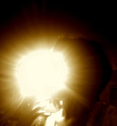 viva la lampa