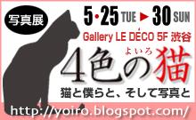 yoiro_banner
