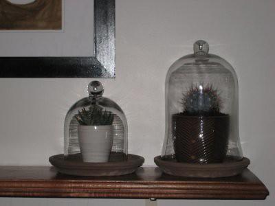 bell jar4