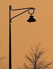 100126 Nl 100127  Ththi  explore ! (thethi (don't like beta groups)) Tags: orange silhouette soleil belgium belgique hiver explore ciel soir objet arbre lampadaire namur wallonie citadelle inthesky autrefois provincedenamur iletaitunefois bestof2010 mygearandmeplatinum setobjetsnew setnamurcity setmorethan15forexplore20102011 ruby22 ruby20 albumjanvier faves48