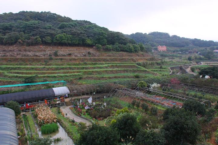 三芝番婆林花園(花卉、醬菜)0017