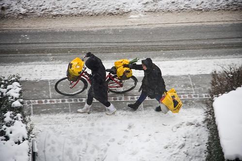 Bike Usage
