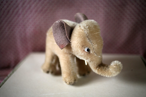 Aunt Bettie's Elephant