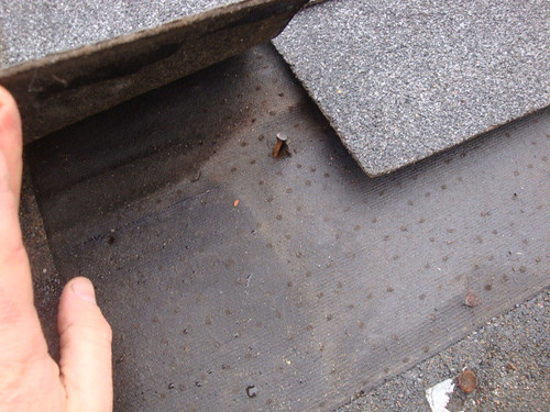 popped up nails on roof leak source
