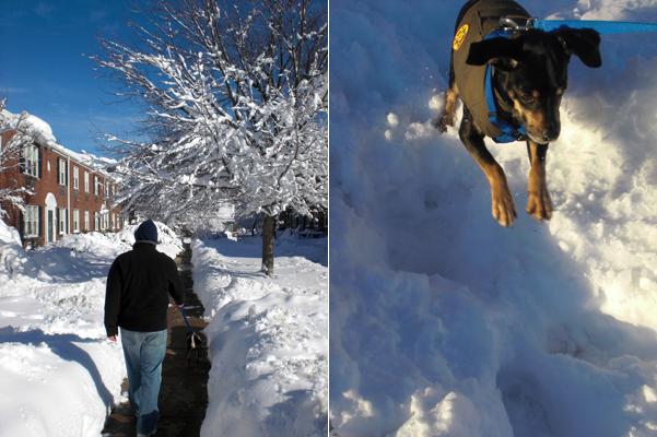11 Snowpocalypse 2.0