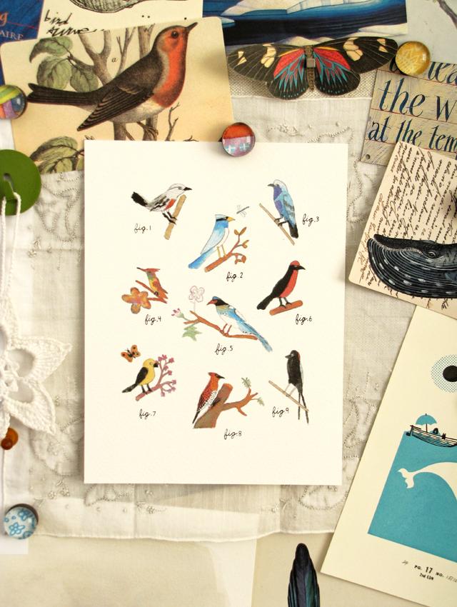 Daniel's bird print