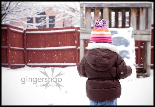 feb snow day3