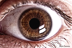 FEAR! (MeigaNe) Tags: macro eye ojo nikon fear lente mirada miedo d80