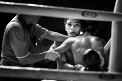 Fight at Ratchadamnoen (Noor +) Tags: boy man men sport project thailand fight asia flickr box bangkok hard thalande thai asie boxing combat pays muay stade noor homme boxe muaythai thailande lieux lumpini thaiboxing lieu thalandaise thaland boxeur boxinf muaytha