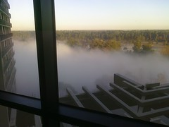 Some pretty serious fog in back