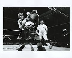 Fight Night. (Robert MacDonald) Tags: diafine boxing leicam6 elmarit