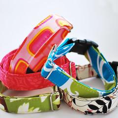 New Spring Styles (DesignsByJinx) Tags: spring jinx dogcollar