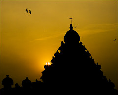 The light within (#7 of 52) (Fountain_Head) Tags: sunset orange india monument colors birds silhouette architecture clouds composition flying ancient pigeons curves structure hues clone crows tones parakeets tamilnadu protected kailasanathartemple kancheepuram project52 pallavaperiod
