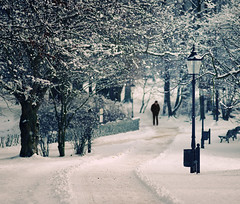 Lost In The Snow (Philipp Klinger Photography) Tags: park winter light shadow snow man tree nature weather photoshop fence germany bench landscape lost deutschland person nikon europe branch dof hessen cross bokeh path branches bad processing lantern flakes hesse homburg kurpark nikon180mmf28 d700