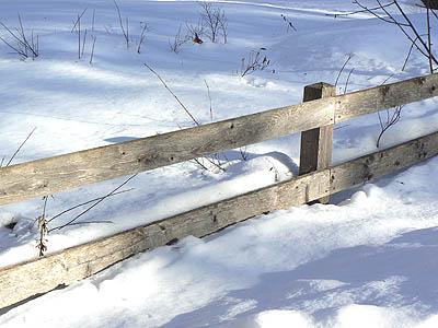 barrière de bois.jpg