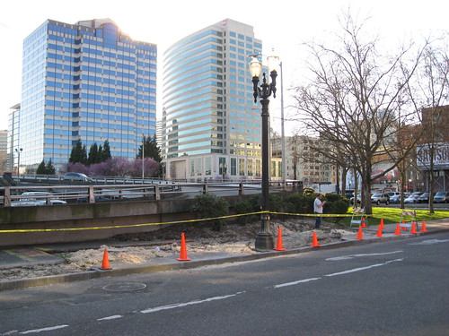 Local tree removals: SW Stark & Naito Pkwy.