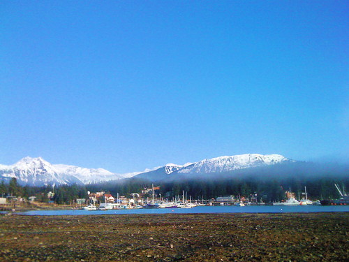Auke Bay Harbor area.