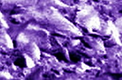 2P167115185EFFA9F4P2412R2M1 #c2(1)rsz (orgasmictomato) Tags: mars nasa analysis anomalies lifeonmars marswatch wastedresources hiddentruths livingalie rocksalive