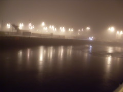 Docks, January (LAF2010) Tags: ireland galway nature environment