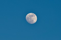 Sharper Moon - Waxing Gibbous