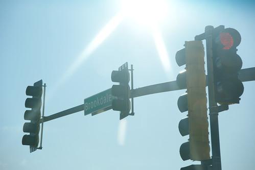 Photo365 Day 50 - Bright Lights