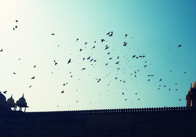 Painted skies...