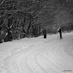 (city/human/life) Tags: street schnee winter people blackandwhite bw lake snow ski cold tree ice germany walking deutschland see essen nikon wasser frost afternoon skiing path strasse spuren freezing talk scene menschen communication nrw sw moment kalt eis bume ruhrgebiet baum januar weg snowcovered 2010 chl tees spaziergang ruhrarea szene fussgnger d90 baldeneysee eisig begegnung schwarzweis jaunary essenwerden 18105mm nikond90 langlaufski skilufer cityhumanlife