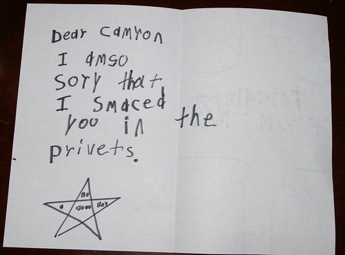 Dear Cameron, I am so sorry that I smacked you in the privates.