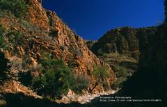Naukluft Park, Olive Trail (blauepics) Tags: africa park trees nature berg landscape rocks desert hill natur national afrika landschaft namibia bume wste felsen hgel visipix olivenpfad