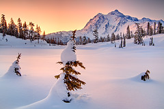 Shuksan's Winter Blanket (KPieper) Tags: winter snow mountains color sunrise frozen washington northcascades shuksan kpieper pieperphotographynet