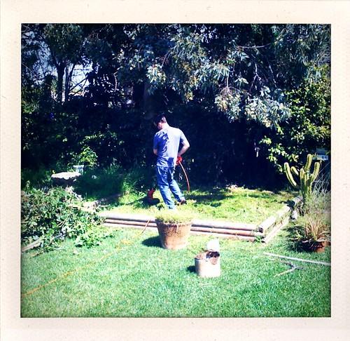 Life: Gardening....