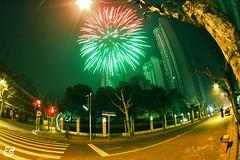 Firework (Elise Epices) Tag