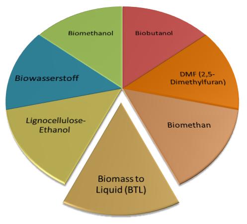 Biokraftstoffe 2 Generation Auflistung und Diagramm BTL Biomethan Lignocellulose