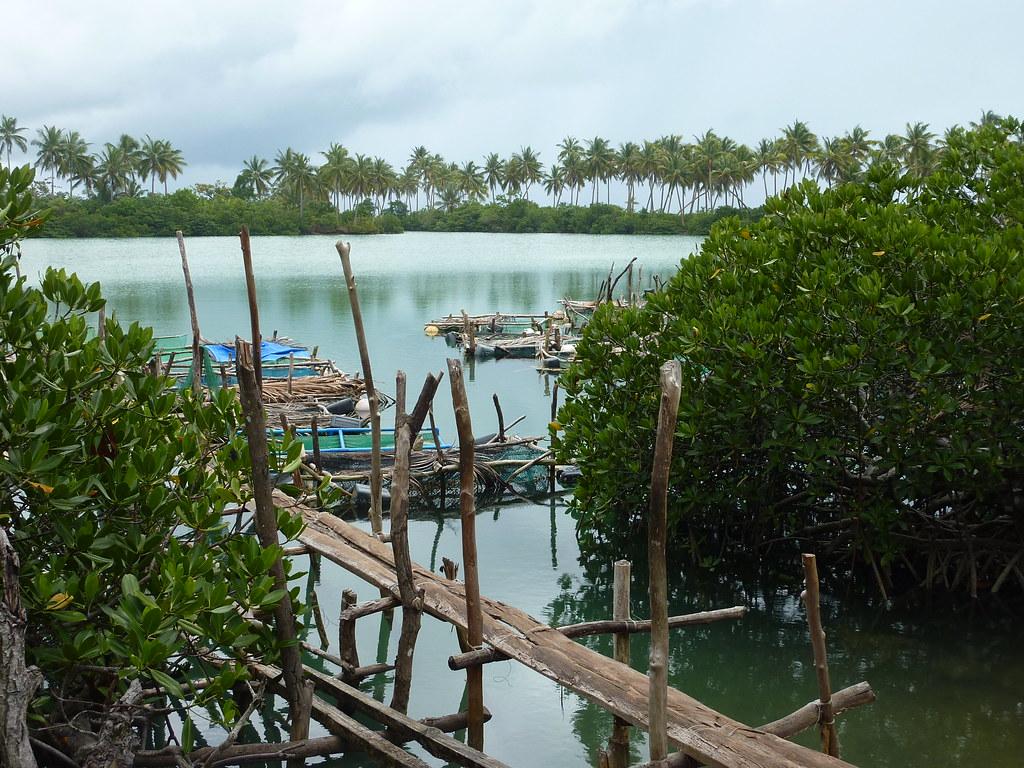 Samar-Guiuan (149)