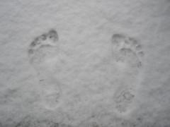 Mama prints on snow