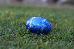 Lone. (ScootaCoota Photography) Tags: blue autumn green grass yard canon wrapping easter lens outside photography eos 50mm march photo back cool chocolate egg australia pic perth lone aussie cabury 2010 1000d
