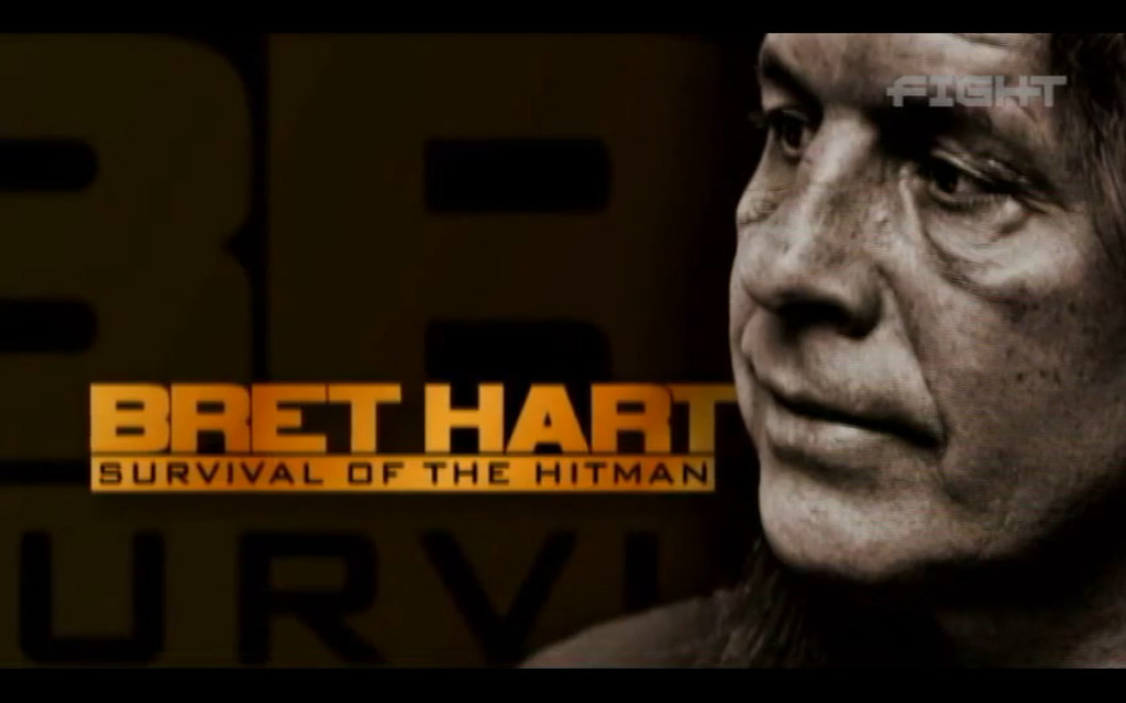Bret Hart - Survival of the Hitman