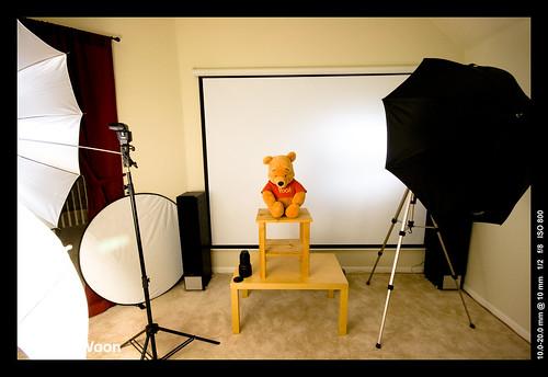 Unwilling Pooh