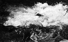 IMG_3842 (enazul) Tags: naturaleza blanco y negro fotografia cuidad aficionado artstica