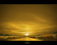 Year One. (Tomasito.!) Tags: road trees sunset sky plants sun sunlight green art tourism nature field yellow clouds photoshop sunrise painting way macintosh one 1 golden interesting artwork nikon artistic you earth year philippine