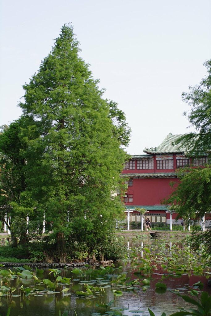 台北植物園 Taipei Botanical Garden  -fa43-